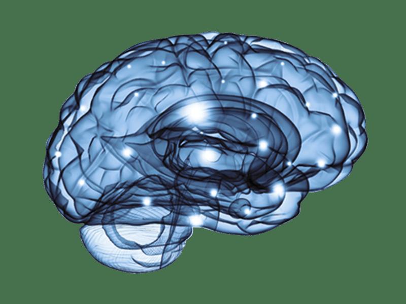 Pathwaves NeuroPath-Quant electroencephalogram (EEG) technology