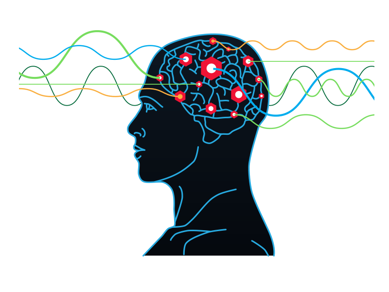 Pathwaves Neuroplasticity